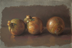 Les trois oignons