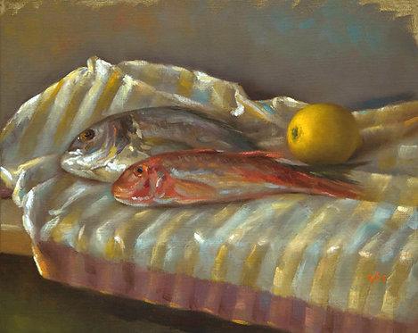 Les petits poissons, JC Gondouin