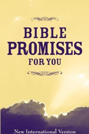 Bible Promises For You New International Version by Zondervan