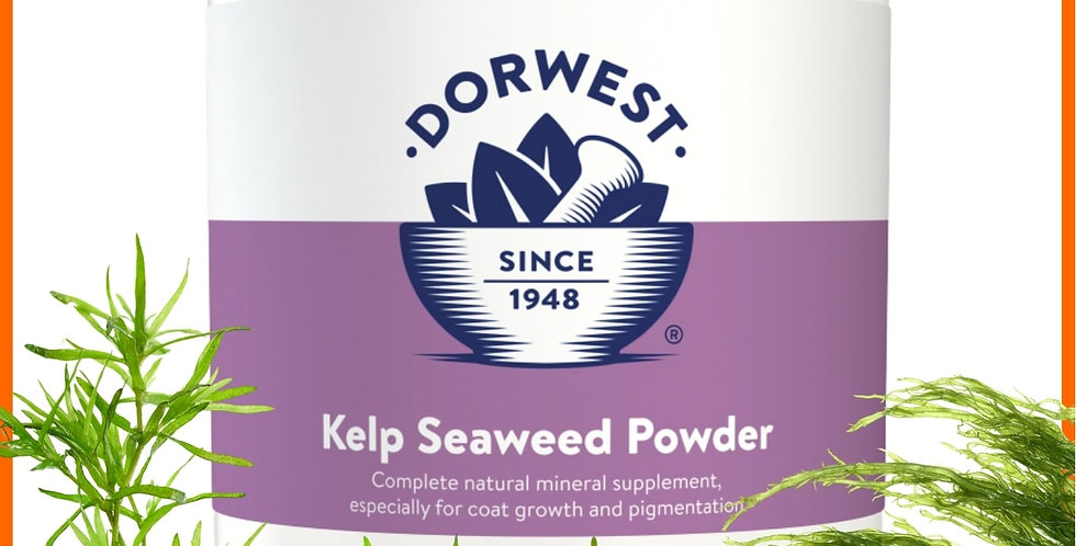 Dorwest Kelp Seaweed Powder 250g for dogs and cats