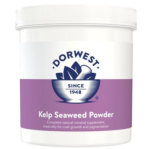 Dorwest herbal remedy tub of seaweed powder to supplement raw dog food