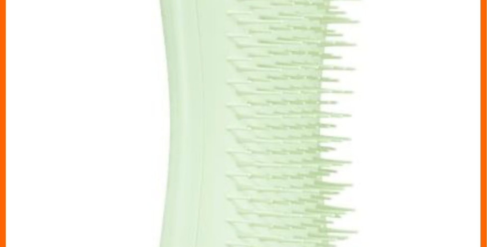 petteezer puppy dog brush starter comb pale green mint