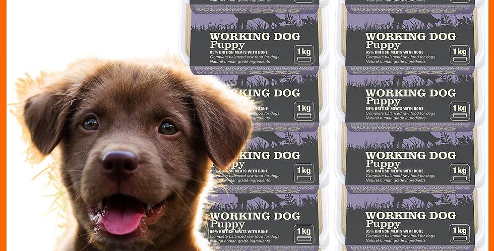 Natural Instinct Puppy raw dog food ten tubs of 1kg
