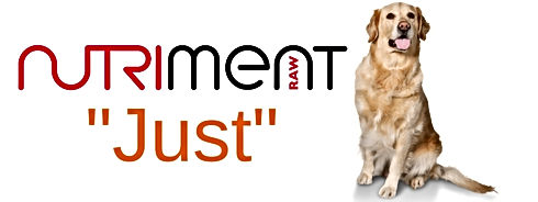 Nutriment Raw Just