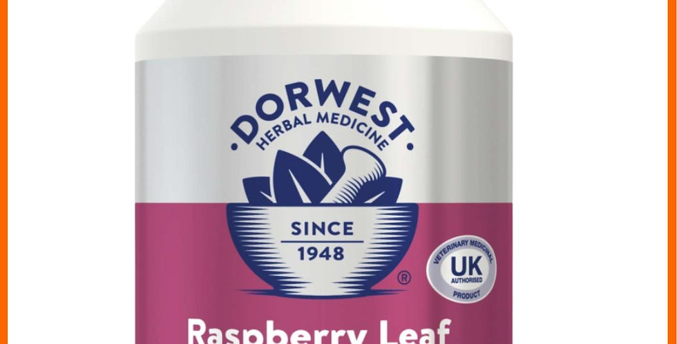 Dorwest Raspberry front view of 100 tablets for dogs