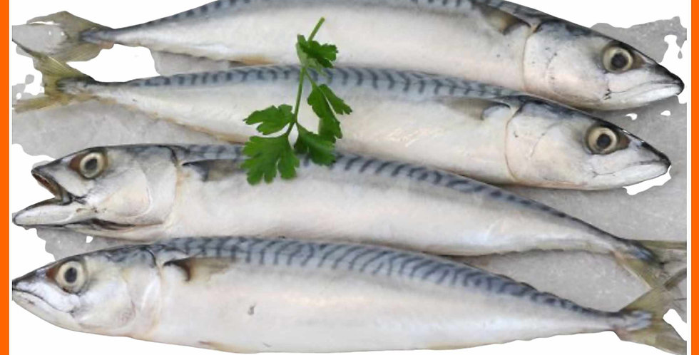 Nutriment Whole Mackerel for dogs treat displayed