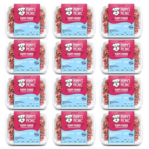 poppys picnic raw growing-up mince multipack of 12 trays for dogs and puppies