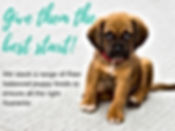 Raw puppy dog foods, give them the best start BARF diet