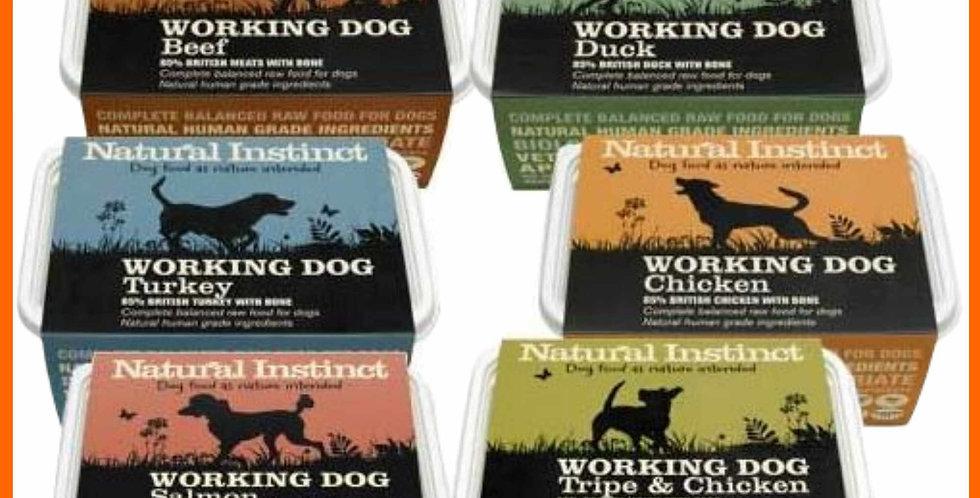 Natural Instinct rainbow assortment 6kg dog food formula
