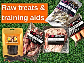Raw dog treats and training aids shop now button