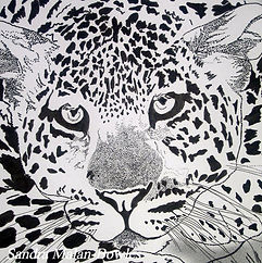 Leopard, Ink