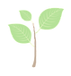 plant%20icon%202_edited.png