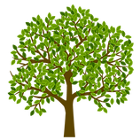 Tree with leaves.png