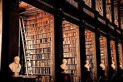 Traditional%2520Library_edited_edited.jp