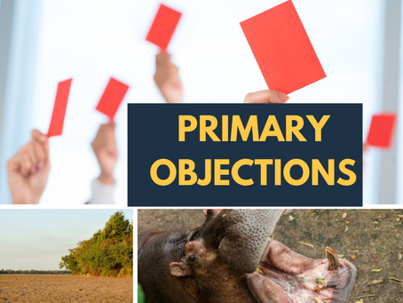 Our Primary Objections