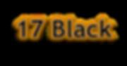 17 Black.png