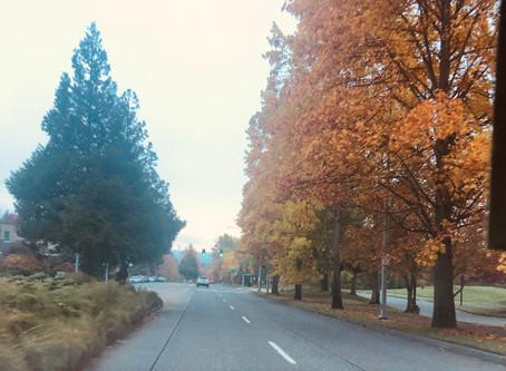 Autumn is beautiful...