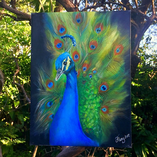 The majestic Peacock-$ 300