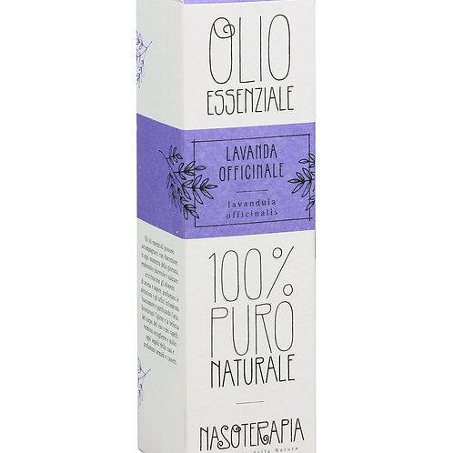 LAVANDA OFFICINALE - Lavandula angustifolia