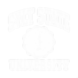 Syltstate_logo_white.png