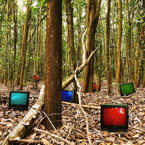 Sidang Hutan.jpg