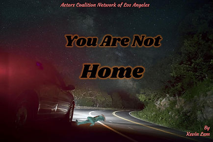 You Are Not Home-page-001.jpg