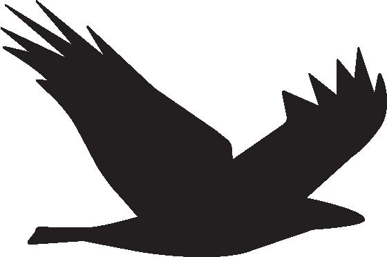 Shidonna Raven Logo Bird.png