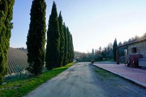 Querceto di Castellina in Tuscany, Italy  |  Romantic Accommodation
