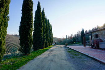 Querceto di Castellina in Tuscany, Italy  |  Romantic Accommodation