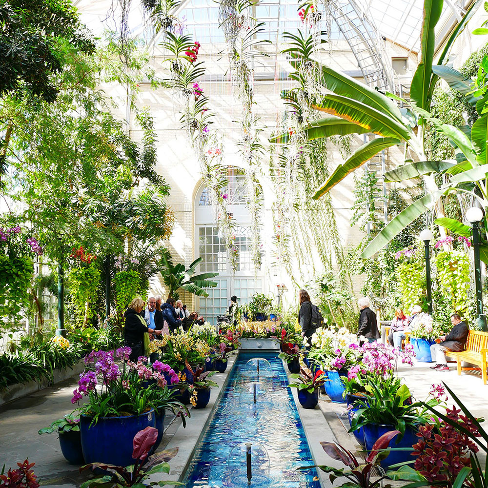 U.S. Botanic Gardens in Washington D.C. - a romantic place for a date