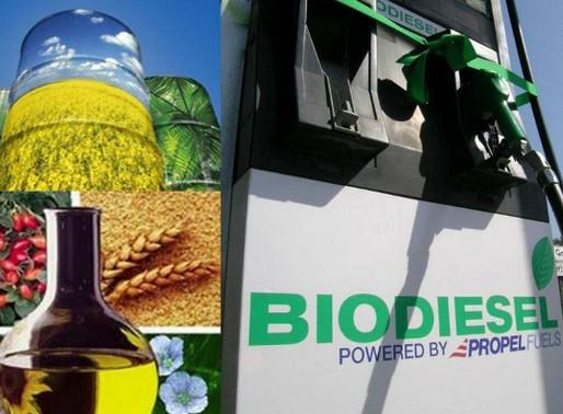 El caso del biodiesel argentino