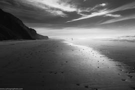 CFH_BEACHY BEACH Shot_Feb2020BW.jpg