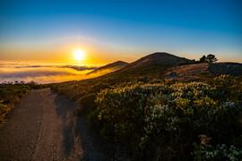 CFHP_MARIN SUNSET OVER FOG II.jpg
