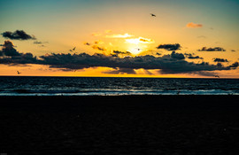 Final Portrait Hermosa Beach CA 003 (1 o