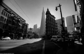 CFHP_Film Art_ San Francisco  2001_Trans