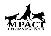 MPACT Logo PNG.png