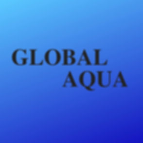 Global PACK-2.jpg