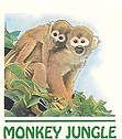 Monkey Jungle | Wildlife Park & Sanctuary | Tourist Attraction | Discovery Center | Zoo | Miami & South Florida | Things To Do In Miami, FL
