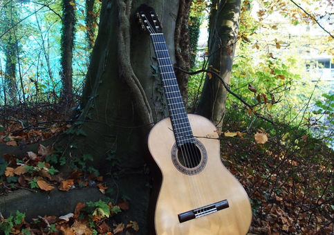 online course classical guitar