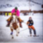 skijor picture.JPG
