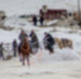 skijor2.jpg