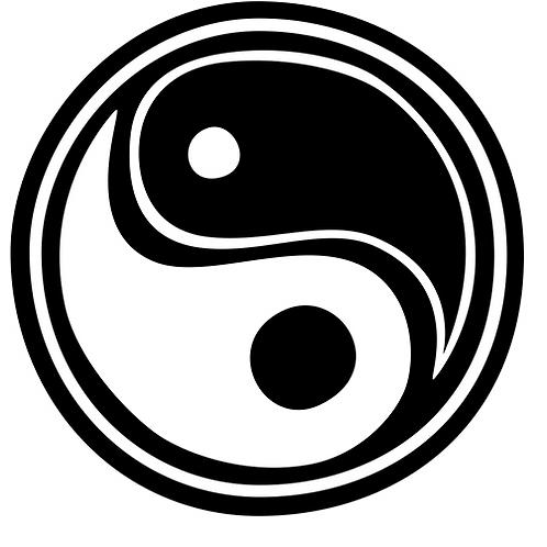 vinyl yin yang