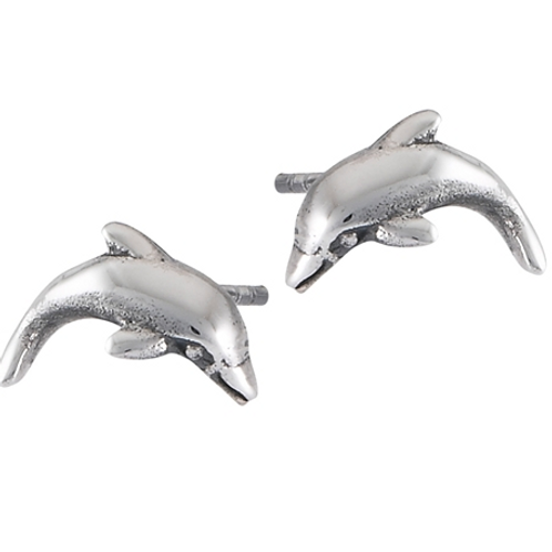 dolphin studs