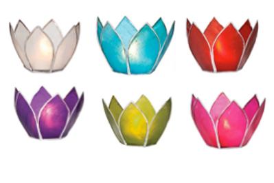 Capiz Lotus Small