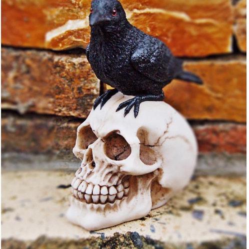raven + skull figurine