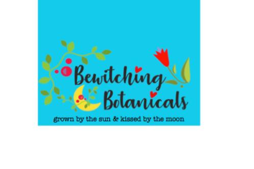 Blessed Thistle - cnicus benedictus