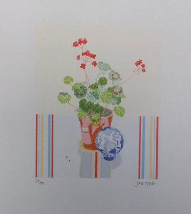 Red Geranium by Jane Tippett