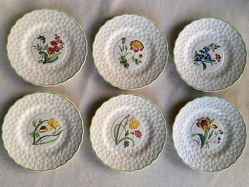 Set of 6 Beautiful Vintage Spode Dinner Plates From 1949