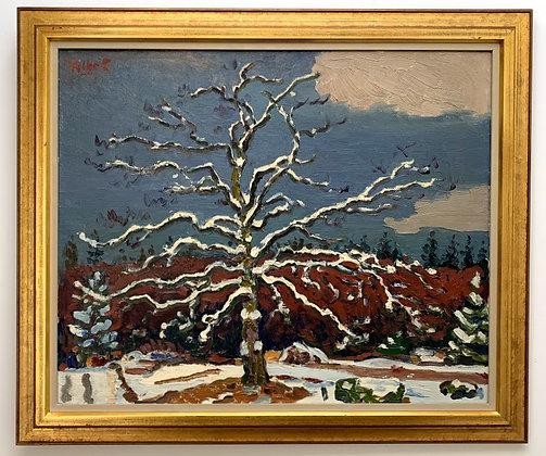Oak in snow, Ödenäs by Folke Persson 1964