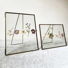 Framed Pressed Flowers